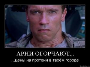 Демотиваторы-Арни