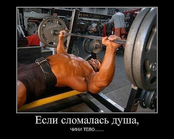 Нормативы по русскому жиму